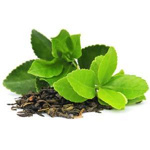 Chá verde melhores ervas para vaporizar