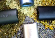 Ervas para aromaterapia no vaporizador de ervas